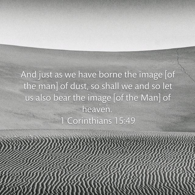 1 Corinthians 15_49